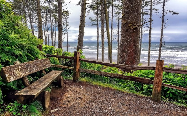 Ruby-Beach-(Washington-state,-USA)