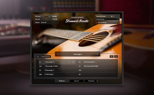 session guitarist strummed acoustic komplete 11