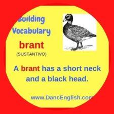 que significa la palabra brant en ingles