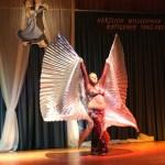Röttgener Tanzabend 2009