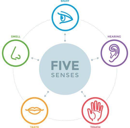 become more mindful by using your five senses - see, hear, touch, taste, and smell