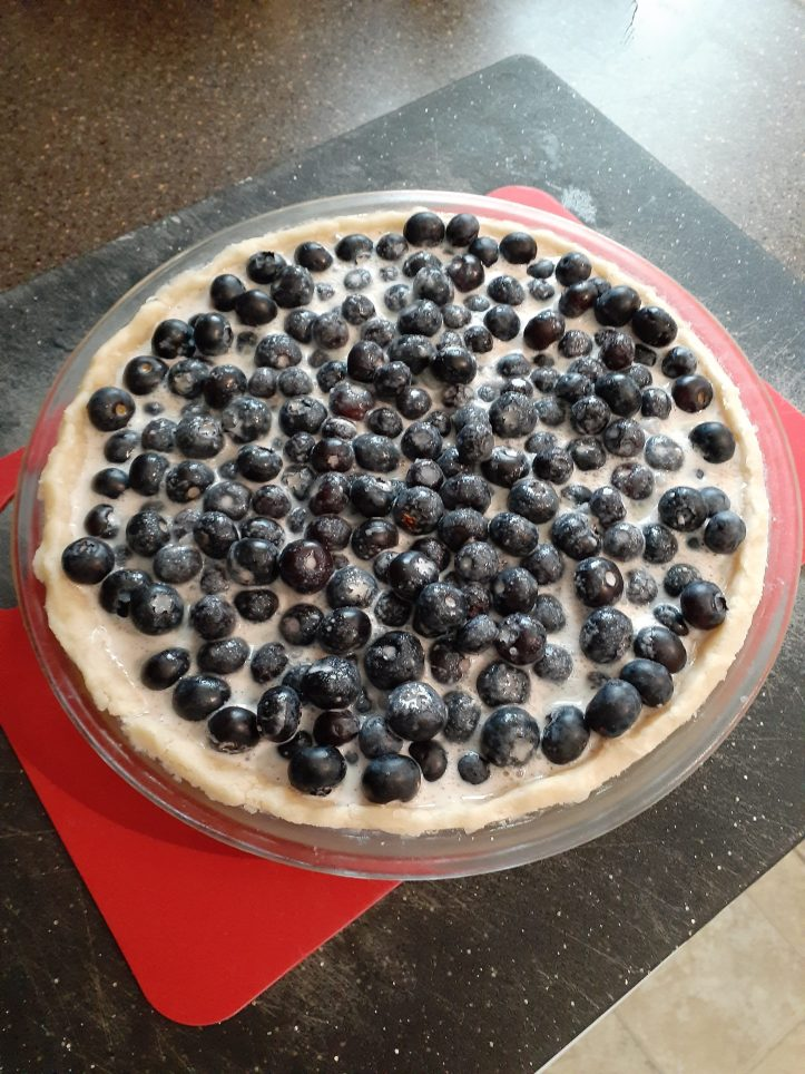 blueberry pie with oil crust before baking