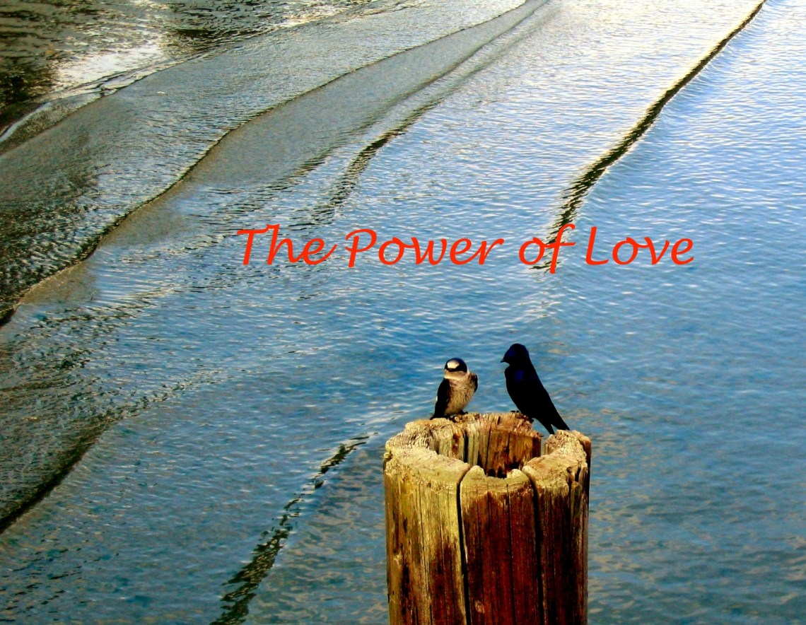 Power of Love.jpg