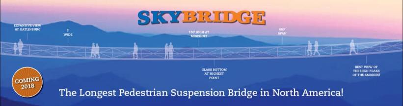 Gatlinburg-Skybridge-1