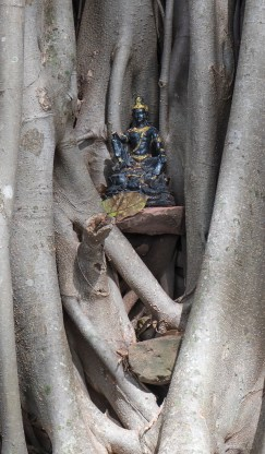 Tree_Buddha_detail