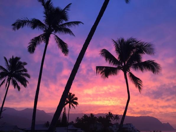 Dancing for Donuts   Kauai Travel Guide.
