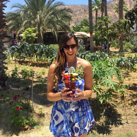 Highlights from Cabo [ + My top 5 Travel Tips for Babes on a Budget]