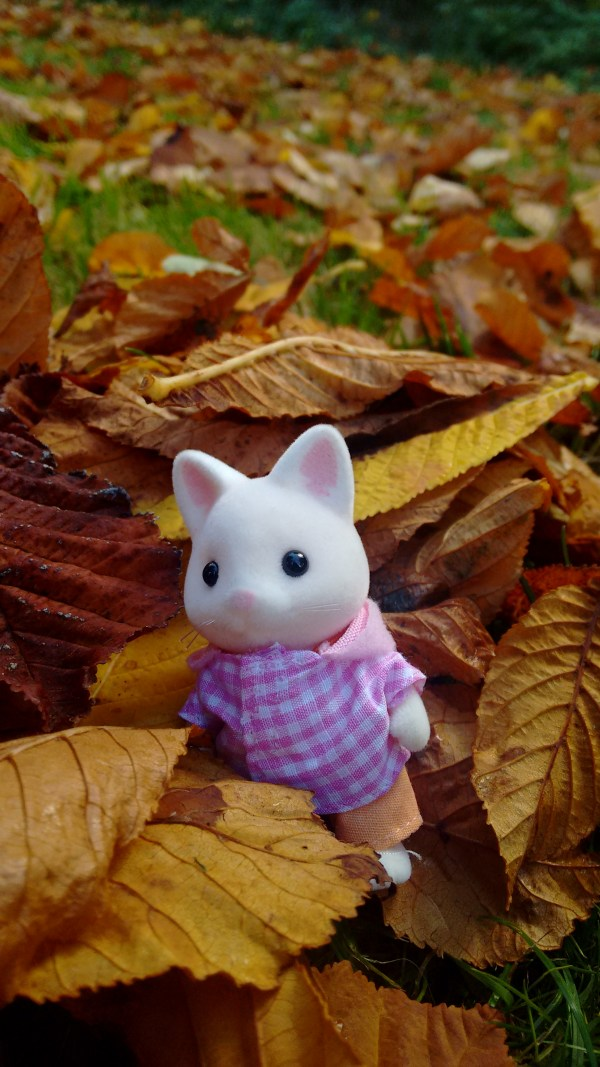 Sylvanian families outside
