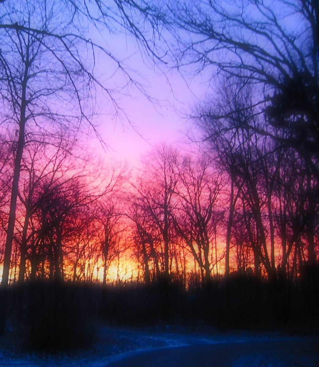 2008-11-25-sunrise-81