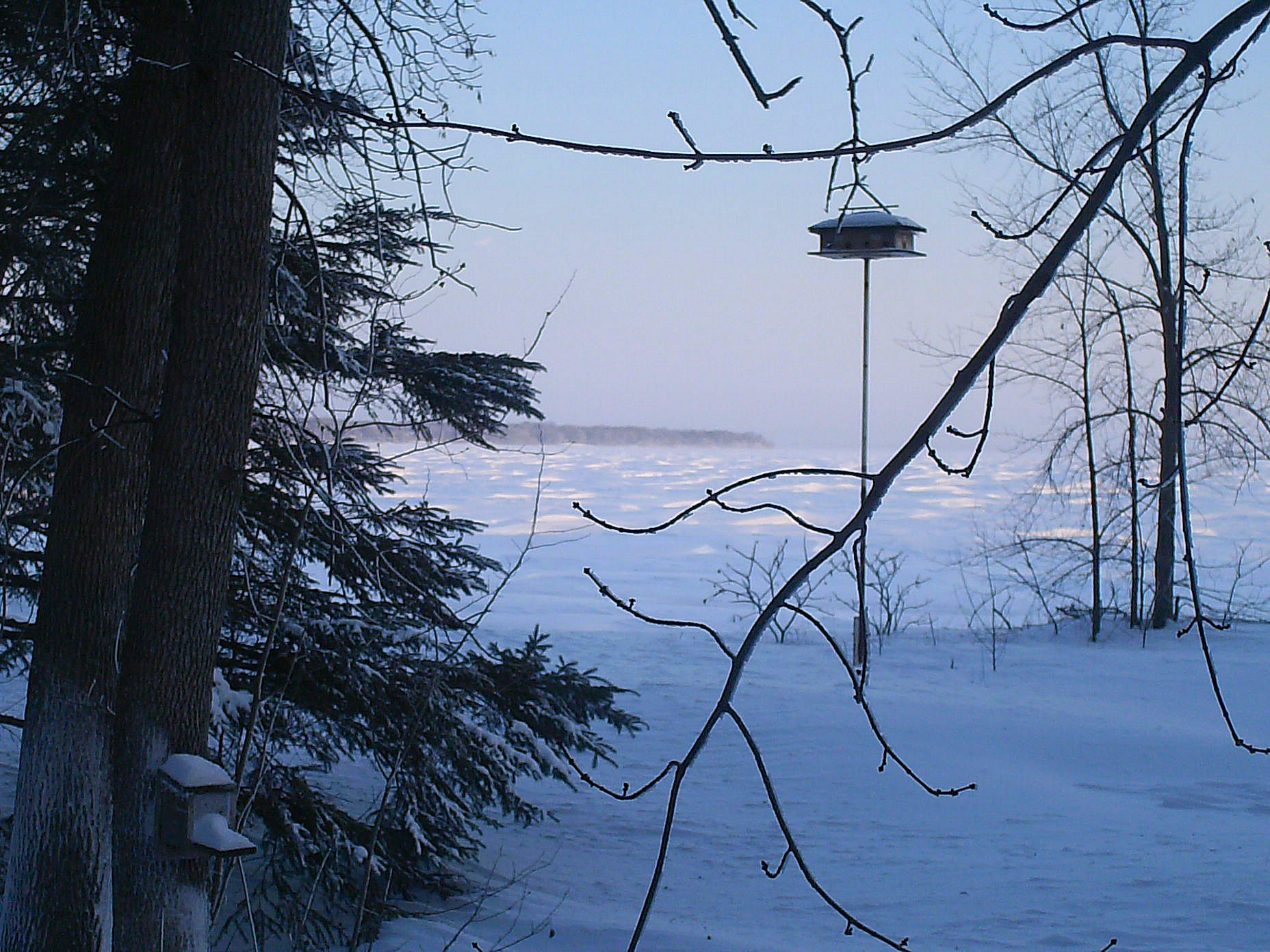 purple martin house, squirrel feeder and lake Dec. 15, 2008