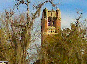 When I was in music school at UF I went up to the top of the century tower with a friend, Jim. He played a carillon concert.