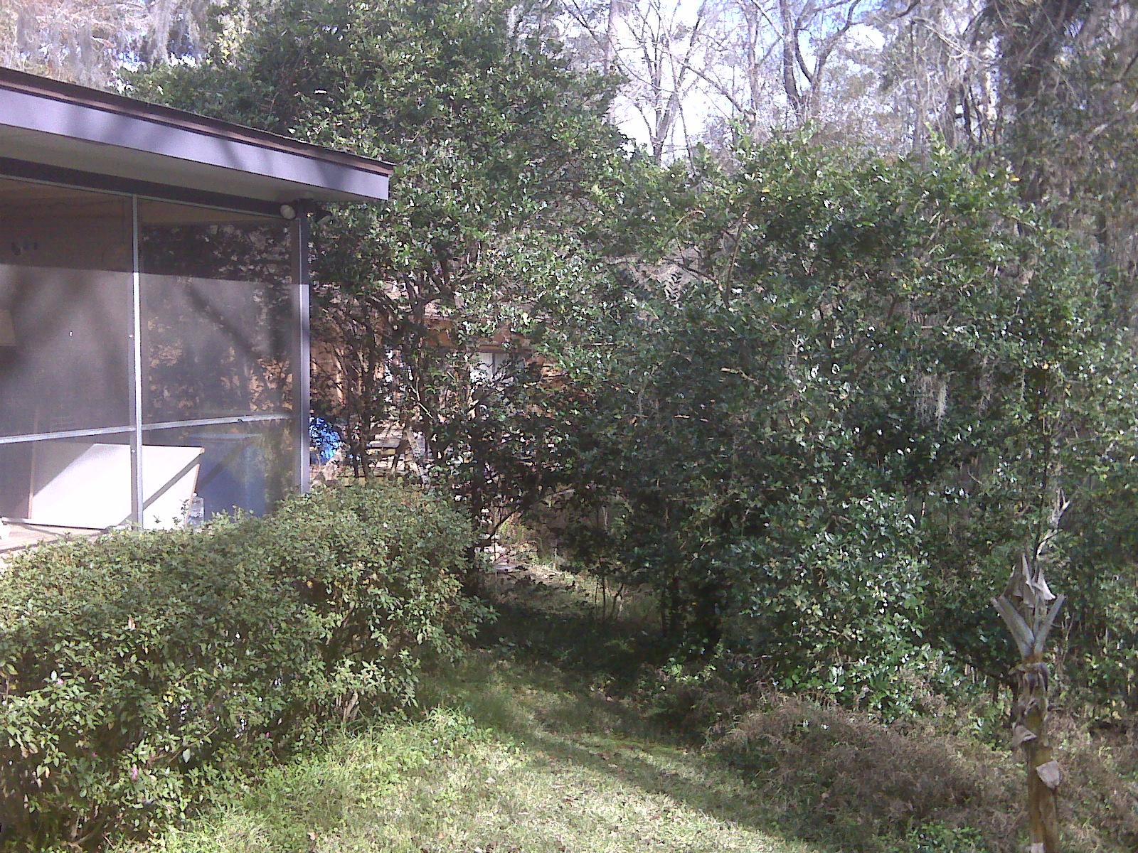 backyard at Kiki's Mom and Stepdad's home