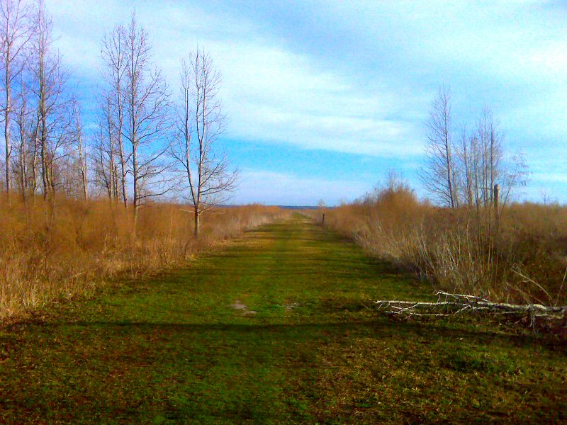 Out on the prairie again