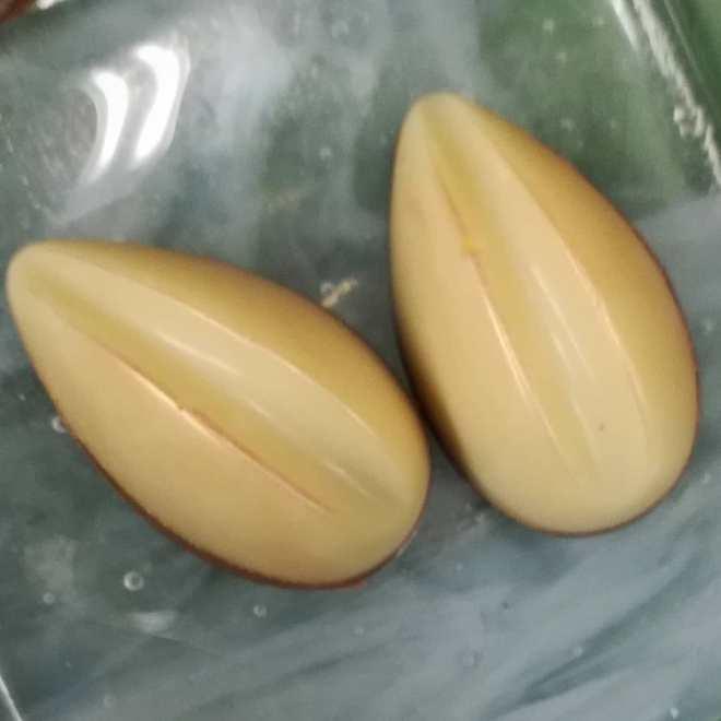 P2Q4: YOUR MOVE - butter caramel over apricot-jackfruit ganache, cast in Ivoire.#chocolatier #flavorperception @ecolechocolat #masteringchocolateflavor