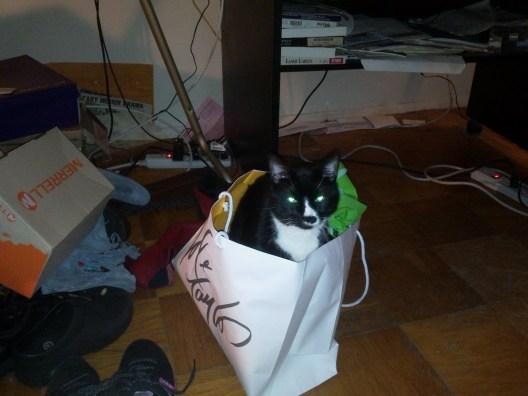 Sylvester (2)