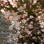 Thirty Things To Do Before…