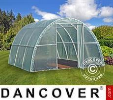 Polytunnel Greenhouse 3x3.6x1.9 m, Transparent