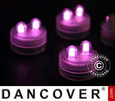 LED Floralyte-Lichter (20 Stück) Ø 3cm, rosa