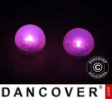 Luz de Fiesta LED, Fairy Berry, Rosa 24 piezas