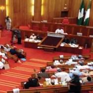 senatesmall
