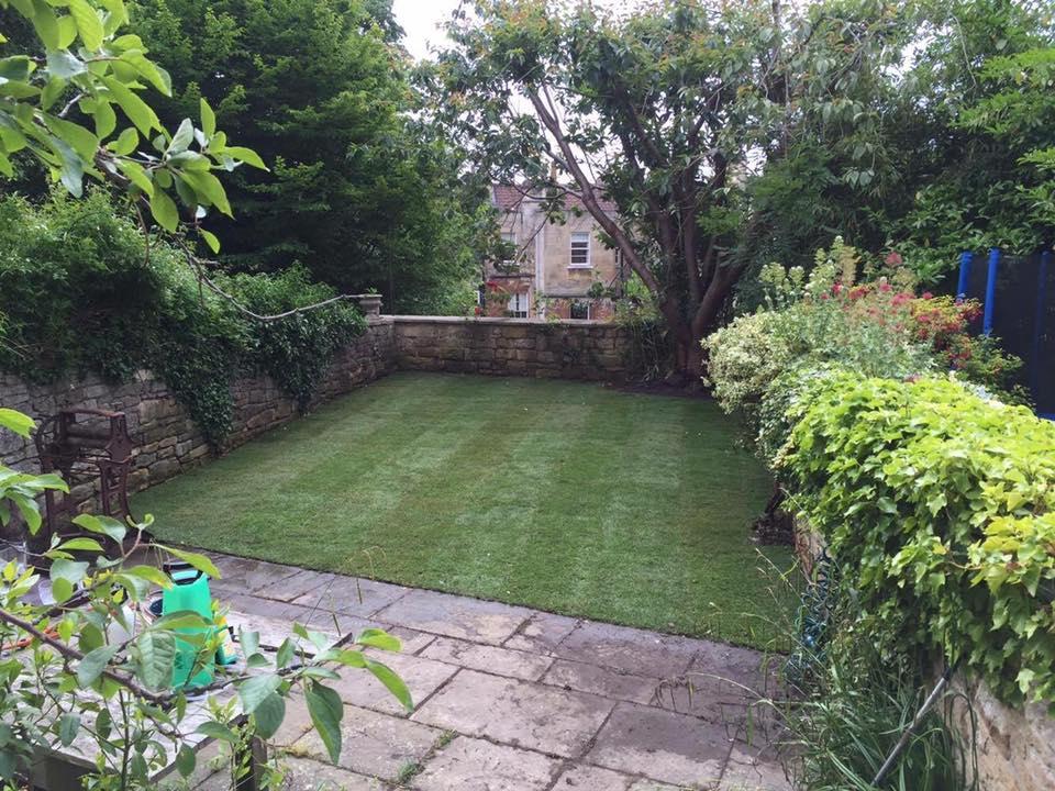 New lawn laid in Bath