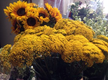 Yarrow and Sunflowers