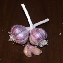 French Red Garlic