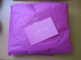 Paquete Lottie
