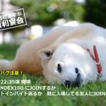 第29回VRCにぎやか大喜利問題2021/04/03