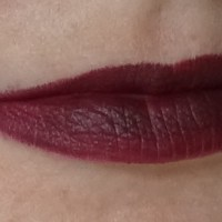 Urban Decay Vice Lipsticks Blackmail and 1993