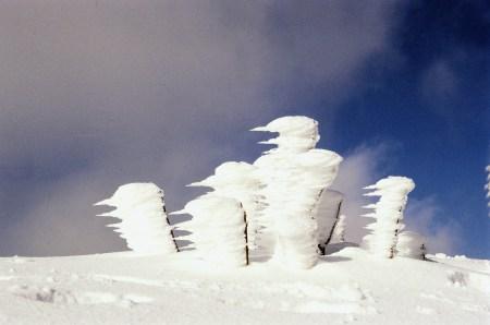 snow-1557517