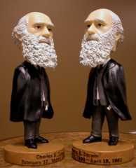 Darwin Bobbleheads