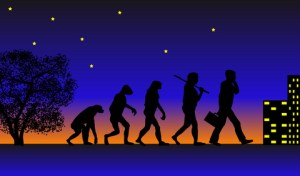 evolution-progression