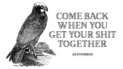 """EffinBirds: """"Come back when you get your shit together"""""""