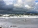 Möwen und Meer