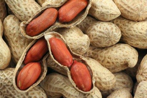 Đậu phộng - loại hạt rất đỗi gần gũi với mọi miền quê Việt Nam, là đặc sản của nhiều tỉnh thành như Long An... VietFlavour.com