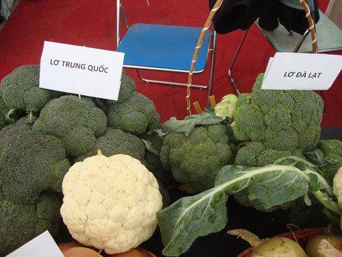 Cách nhận biết rau Đà Lạt và Trung Quốc