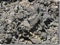 Cooled lava field
