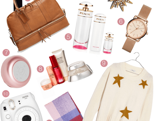Last Minute Shopping Gift Guide