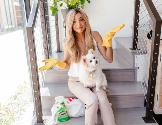dani austin x clorox what every pet owner should know