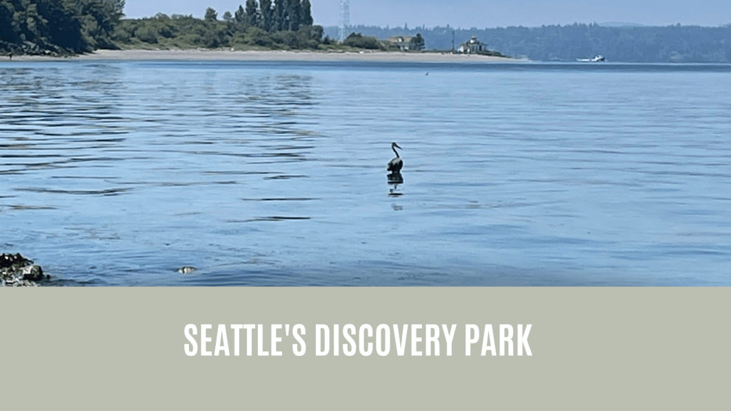 SEATTLE_DISCOVERY_PARK