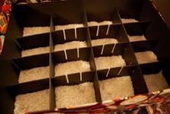 002-xmas-storebox2