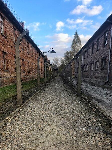 Gard ghimpat Auschwitz Polonia Daniela Bojinca Blog