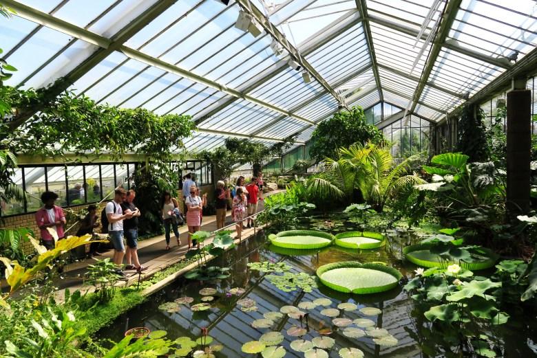 kew gardens - londres - reino unido