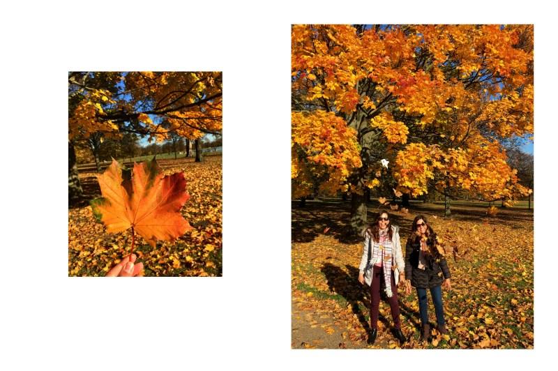 hyde park-autumn-london-reino unido