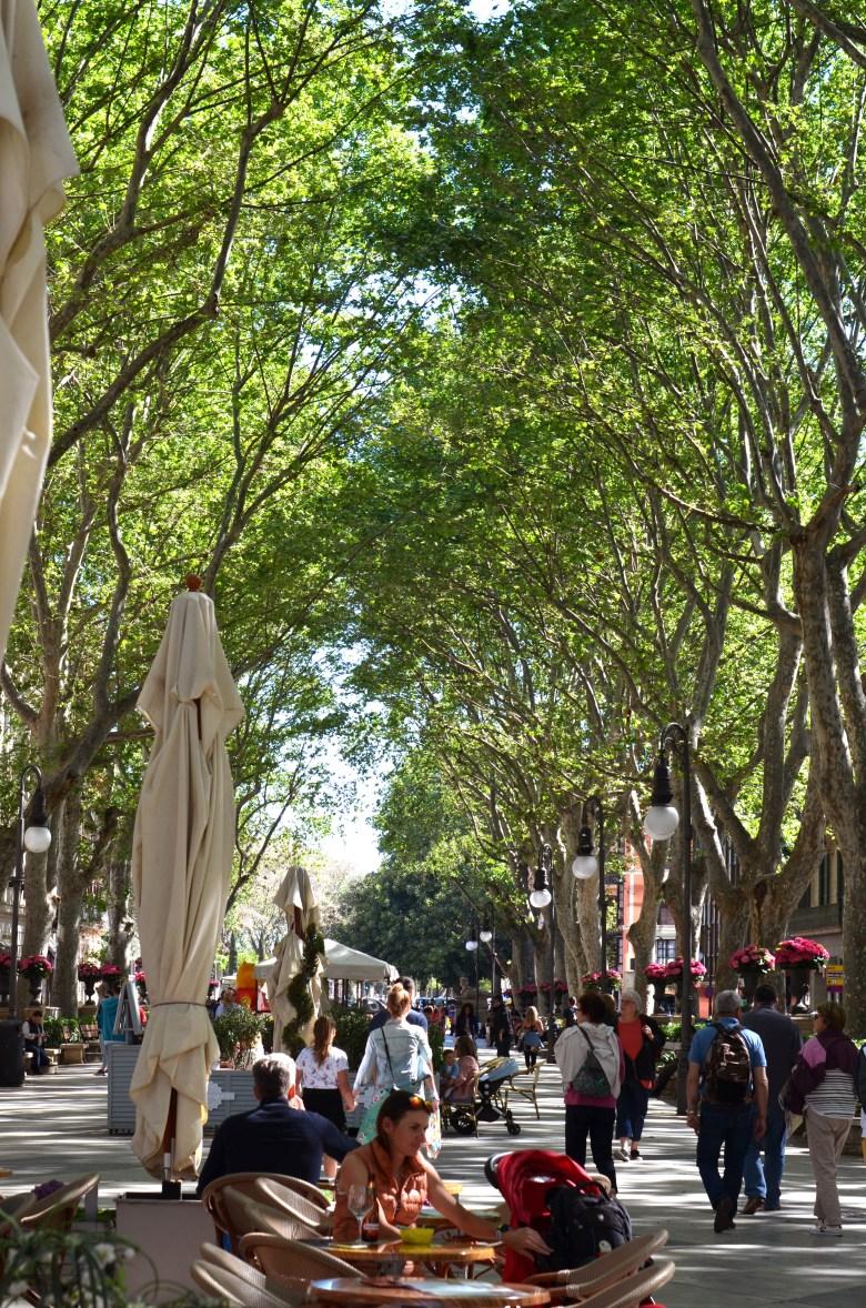 passeig des born - plaza mayor - palma de maiorca - turismo