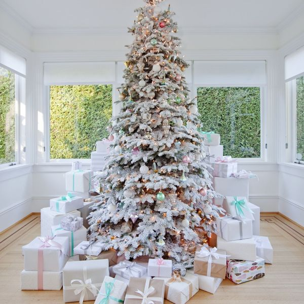 Christmas Trees Any Style!