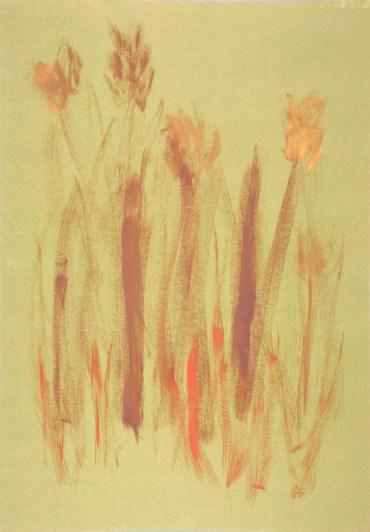 fiori04