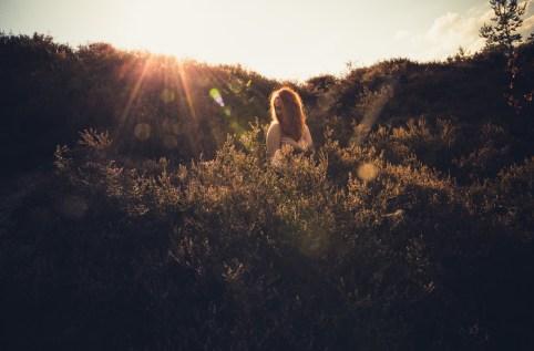 Tascha in the heath