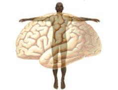 Psicologia Clínica e Psicanálise